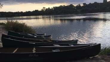 Balades nature accompagnées autour de la Loire - Maison de la Loire